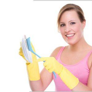Nisha-Sawhney_Edi-Baur_Dish_Brush_Cleaning